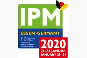 IPM 2020 Рис.1