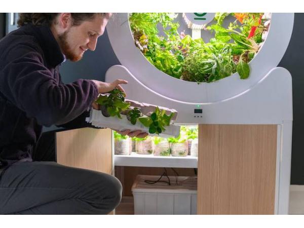 OGarden пропонує створювати мікроферми в своїй квартирі Рис.1