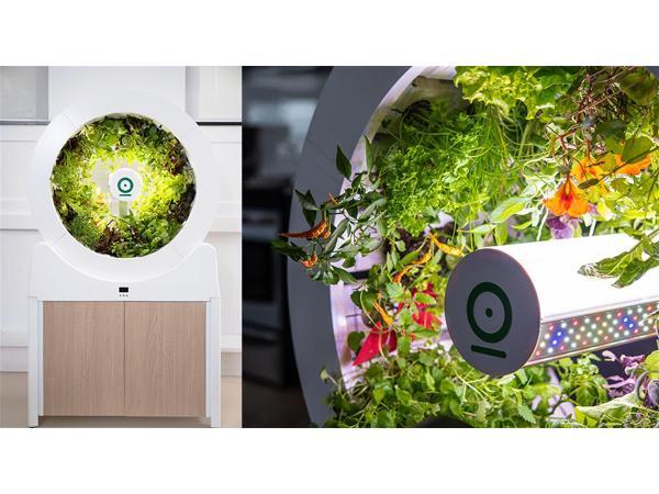 OGarden пропонує технологію для створення мікроферми в своїй квартирі Рис.2