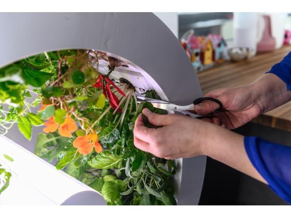 OGarden пропонує технологію для створення мікроферми в своїй квартирі Рис.3