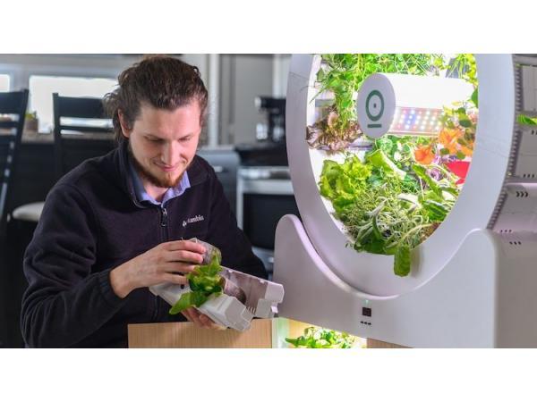 OGarden пропонує технологію для створення мікроферми в своїй квартирі Рис.4