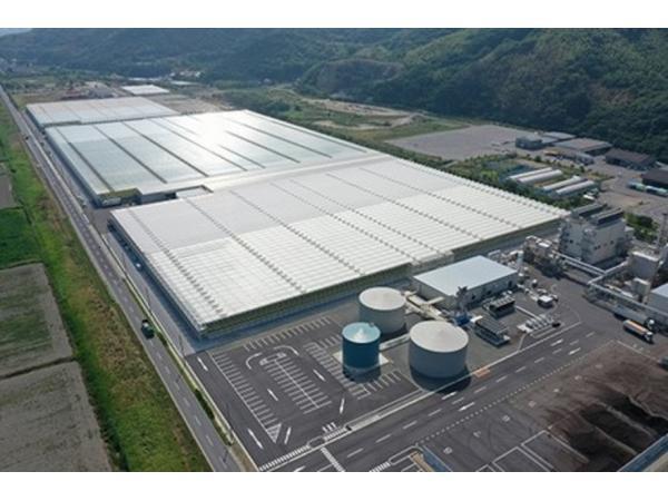 У Японії відкрили теплицю площею 13 га з електростанцією на біомасі Рис.1