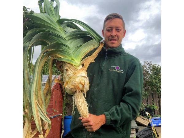 Фермер виростив гігантську цибулю завбільшки з 2 людські голови Рис.8