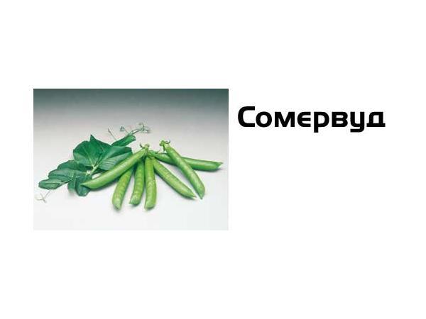 Сомервуд Рис.1