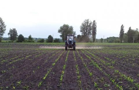 Посівна-2019: Вже посіяно півмільйона гектарів раннього ярого ячменю Рис.1