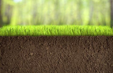 В НААН проаналізували стан ґрунтів за екологічними індикаторами зеленого зростання Рис.1