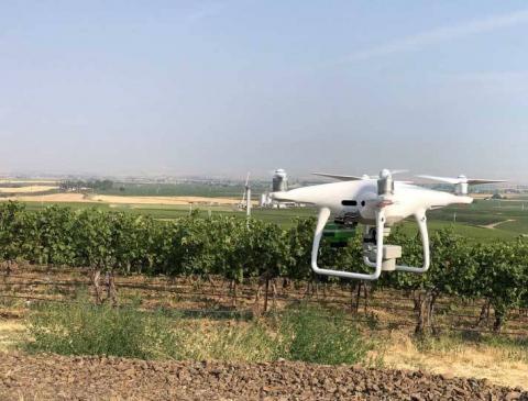 Pollen Systems — стартап, що використовує дрони та штучний інтелект для збору й аналізу інформації Рис.1