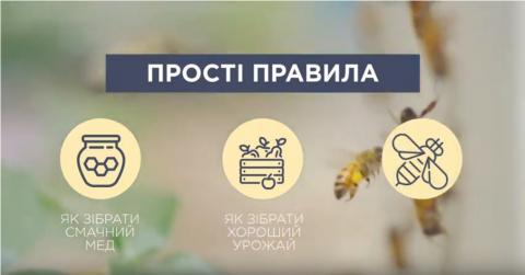 Створено ролик про профілактику отруєння бджіл Рис.1
