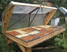 У закритій сушарці на сонці можна дешево сушити багато культур Рис.1