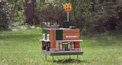 Бджолам побудували крихітний McDonald's Рис.1