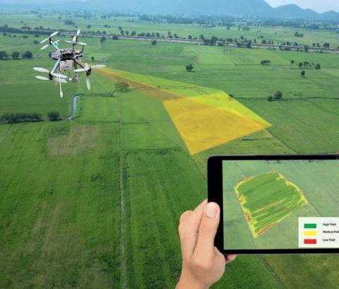 Думка: Точне землеробство в Україні — це контроль, у Європі — ефективність Рис.1
