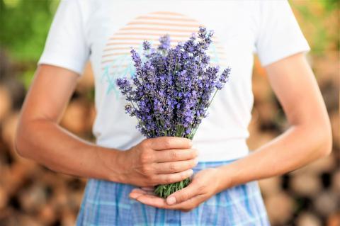 молоде подружжя фермерів на Київщині планує створити лавандовий еко-парк Рис.1