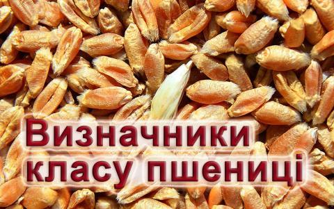 Представлені on-line інструменти для визначення класу пшениці за новим стандартом Рис.1