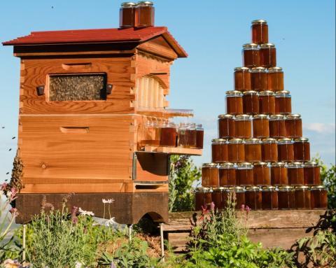 Розробка для бджолярів: вулик, який сам збирає мед Рис.1