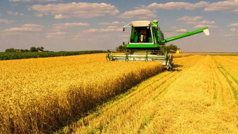 В Україні вже чотири області розпочали жнива Рис.1