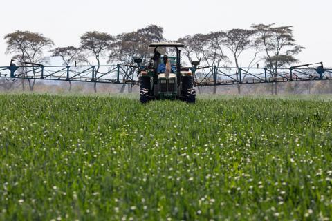 Вчені розробляють пестициди на основі природних сполук Рис.1