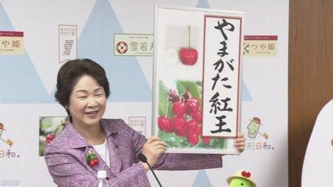 Японці вивели вишню з найбільшими в світі ягодами Рис.1