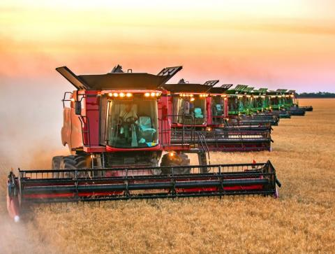 Нібулон: збиральна кампанія ранніх зернових культур наближається до завершення Рис.1