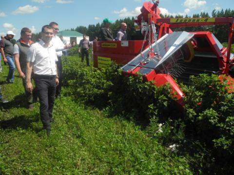 Унікальний комбайн для збору смородини випробували в Татарстані Рис.1