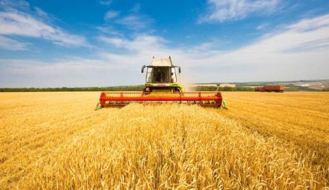Жнива-2019: В Україні зібрано 19,7 млн тонн зерна нового врожаю Рис.1