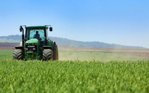 Стан посівів пізніх культур оцінюється як добрий та задовільний Рис.1