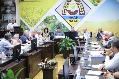 Україна має всі можливості для збільшення виробництва рису, - Шеремета Рис.1