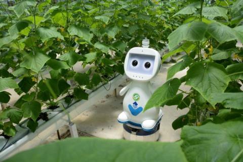 У Китаї створили агроробота з технологією 5G Рис.1