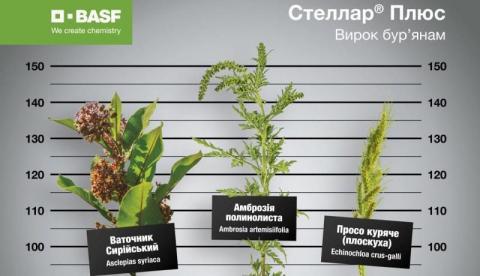 Аграріям презентували удосконалений гербіцид Стеллар® Плюс Рис.1