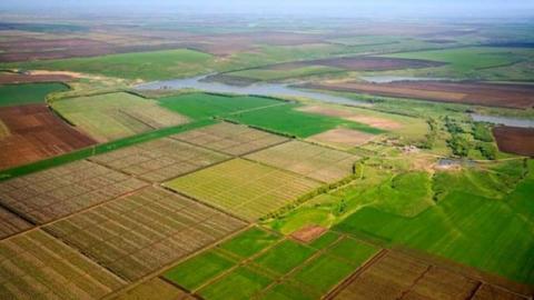 За тиждень включено 4,4 тис. га сільгоспземель для продажу прав оренди на аукціоні, — Держгеокадастр Рис.1