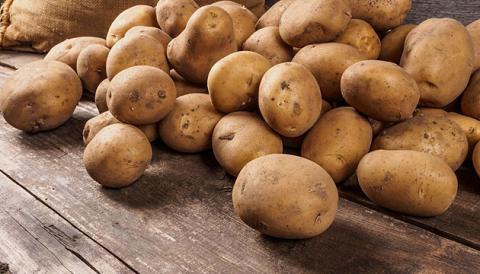 Імпорт картоплі вже перещивив експорт майже у 28 разів Рис.1