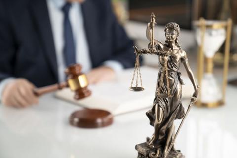 Безцінна перемога: як Агротек відстояв право вимоги до поручителів Сварога у Верховному Суді Рис.1