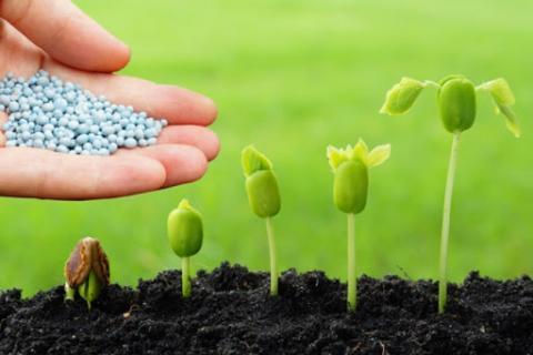 Держпродспоживслужба відзвітувала про рівні забезпечення аграріїв пестицидами Рис.1