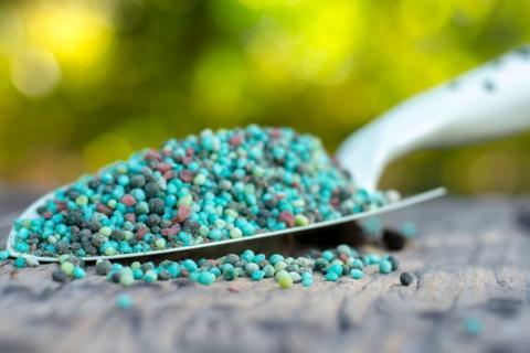 Квотування імпорту мінеральних добрив призведе до ряду негативних наслідків Рис.1