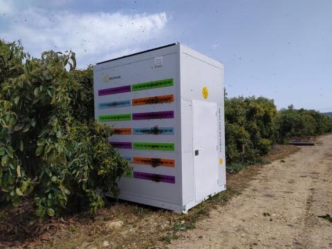 В Ізраїлі відновлюють популяцію бджіл за допомогою вуликів-роботів Рис.1