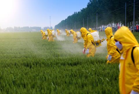 Американці розробили нетоксичний гербіцид, який може замінити гліфосат Рис.1