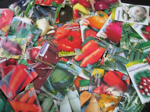 Чи зміниться порядок реєстрації сортів рослин? Рис.1