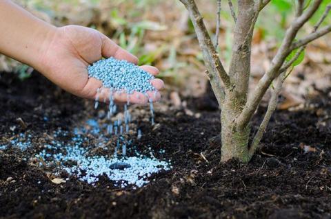 KME: Українські виробники добрив мають проблеми з сировиною Рис.1