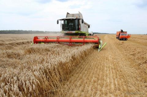 Мінагрополітики збільшує прогноз урожаю зернових 2018 до 63,1 млн тонн Рис.1