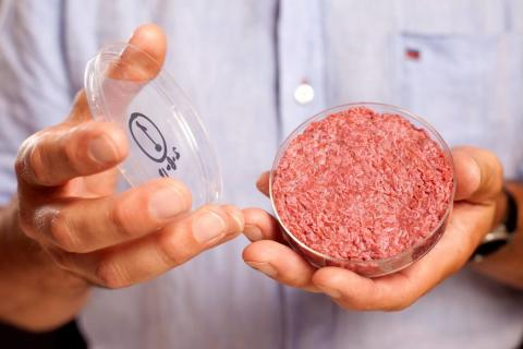 М'ясо з пробірки - вже скоро на прилавках! Рис.1