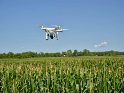 На сільське господарство в Україні припадає близько 40% ринку дронів. Рис.1