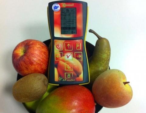 Представлений пристрій для оцінки оптимальної стиглості фруктів Рис.1