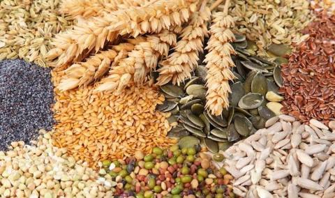 Прийнято низку нормативно-правових актів у сфері охорони прав на сорти рослин - підсумки року Рис.1