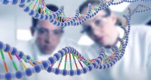 Технологія клонування генів — нова розробка для захисту рослин Рис.1