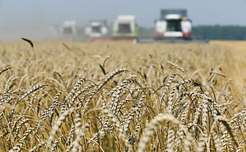 Урожай-2018: Аграрії зібрали майже 63 млн тонн зерна Рис.1