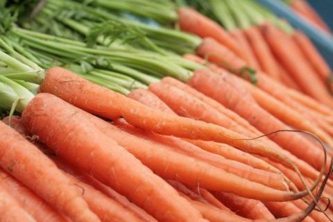 За тиждень ціни на моркву впали одразу на 20% Рис.1