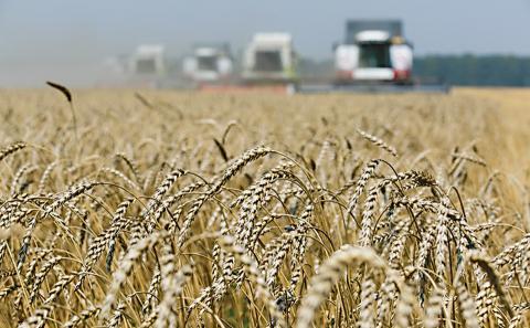 Завершується збирання урожаю-2018: Намолочено 69,3 млн тонн Рис.1