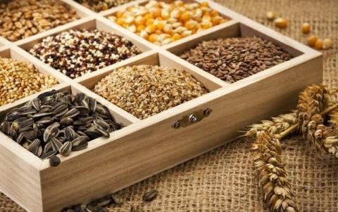 Актуальна інформація для аграріїв про способи та контроль за зберіганням насіння Рис.1