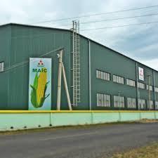Компанія МАЇС презентувала оновлену лінійку гібридів кукурудзи під час семінару на Черкащині Рис.1