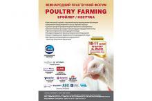 Poultry Farming. Бройлер/Несушка Рис.1