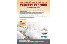 Poultry Farming.Індиківни́цтво Рис.1